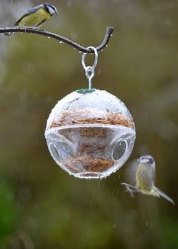 Globe feeder