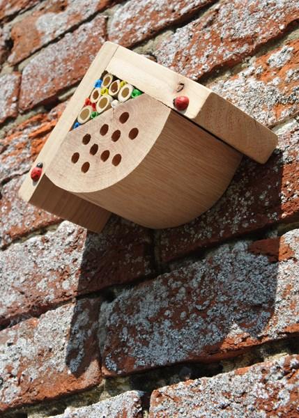 Mini bug box