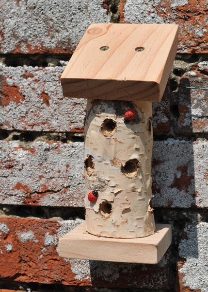 Mini ladybird tower