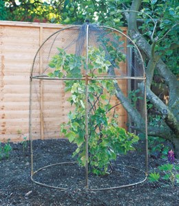 Round fruit cage