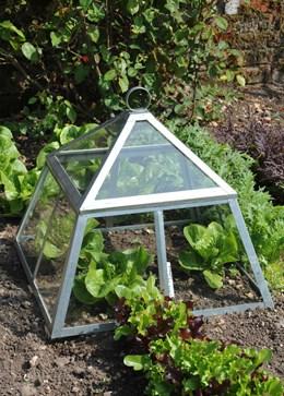 Lidded kitchen garden cloche