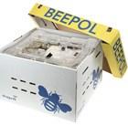 Beepol Garden Hive