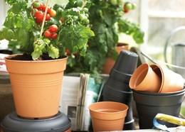 40cm plant pot