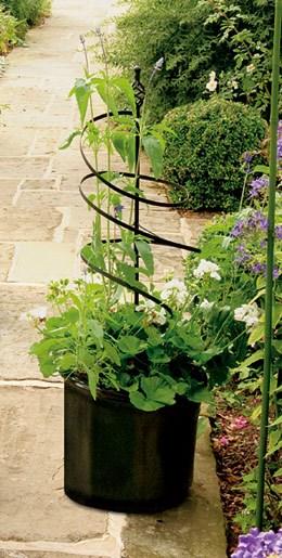 Medium blacksmith spiral plant support