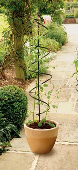 Large blacksmith spiral plant support