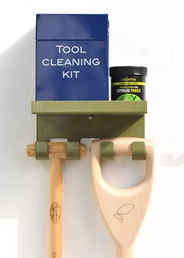 Double tool hook with shelf