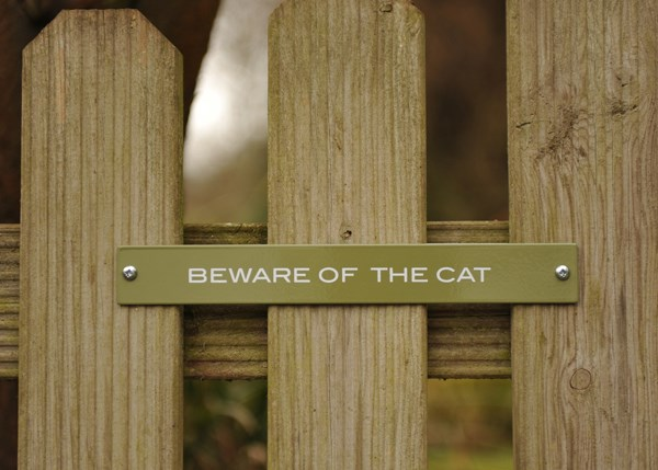 Plaque - Beware of the cat