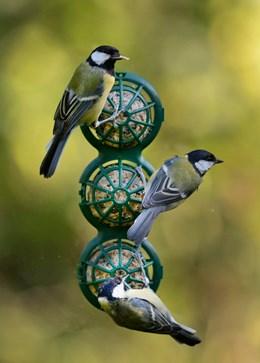 Suet ball window feeder