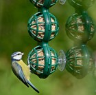 Suet ball window feeder