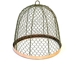 Protective mesh cloche with copper ring - lichen green