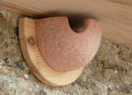 Ceramic housemartin nest box