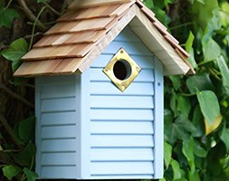 New england nest box - Blue