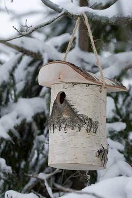 Woodland nest box for smaller birds