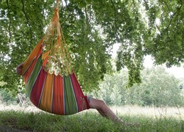 Swing hammock chair - tutti fruiti
