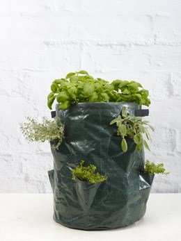 Twin pack herb grow bags