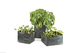 Twin pack mixed veg grow bags