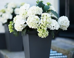 Tall square patio planter