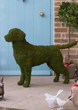 Labrador garden sculpture