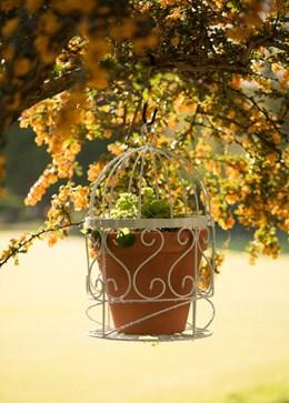 Bird cage pot holder