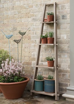 Weathered wood plant ladder
