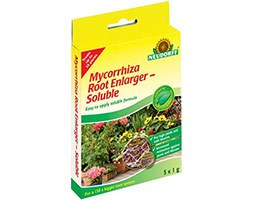 Mycorrhiza root enlarger soluble