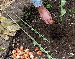 Bulb planting auger