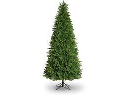 Minnesota pine slim