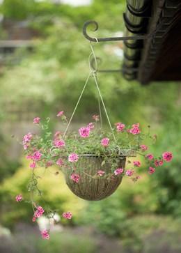 Deep hanging basket