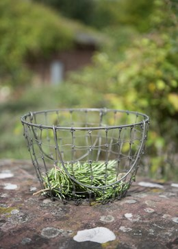 Foraging basket