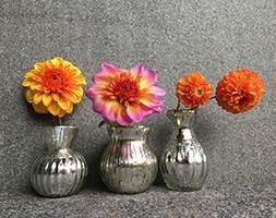 Ulu glass vases